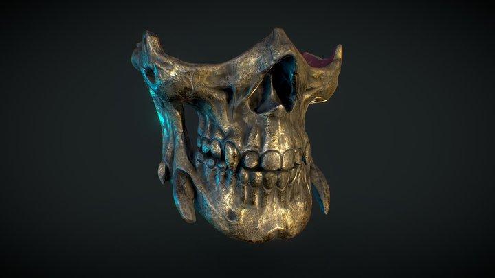 Golden Skull 3D Model