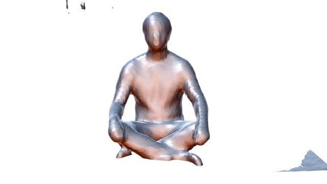 Andy Meditation 3D Model