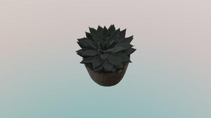 Elina Audze 3D augs 3D Model