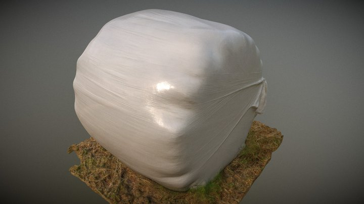 Hay Bale01 08 Scaled 01 3D Model