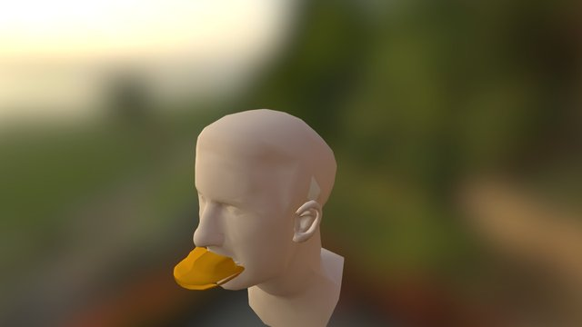 Duckbill Head 3D Model