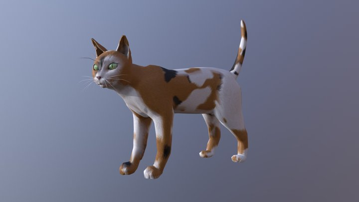 Animated Game Ready Calico Cat 3D Model