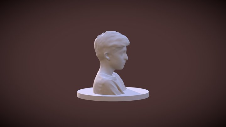 Model -D 3D Model