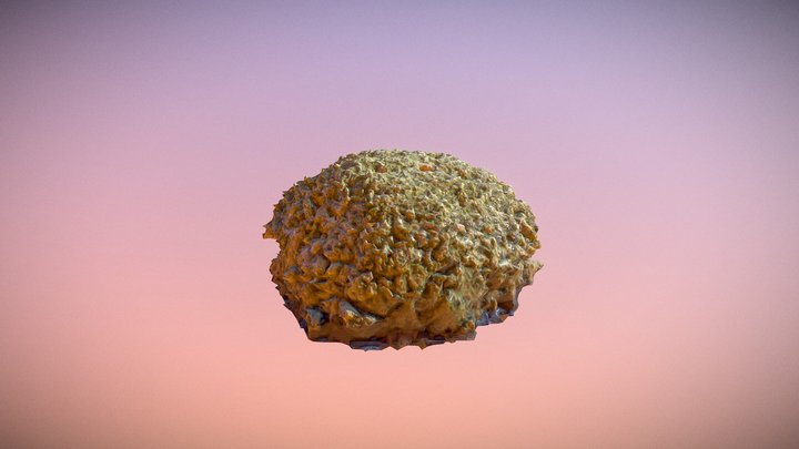 Moss1 3D Model