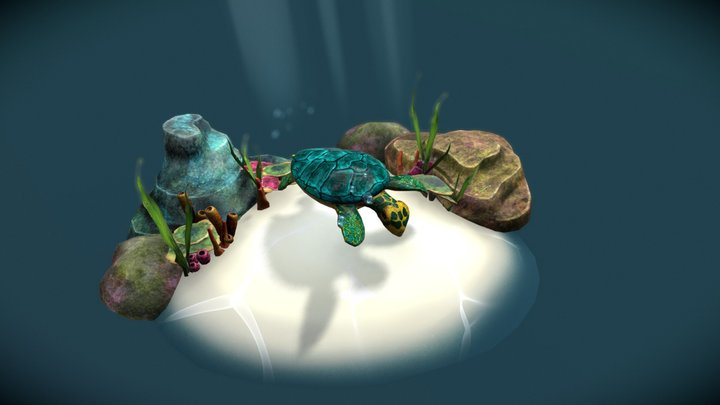 Happy Turtle 3D Model