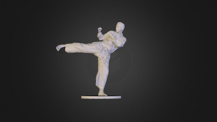 3D Scan Karate Fighter 3D Model