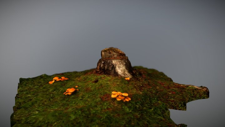 Tree stump with mushrooms nearby. 3D Model