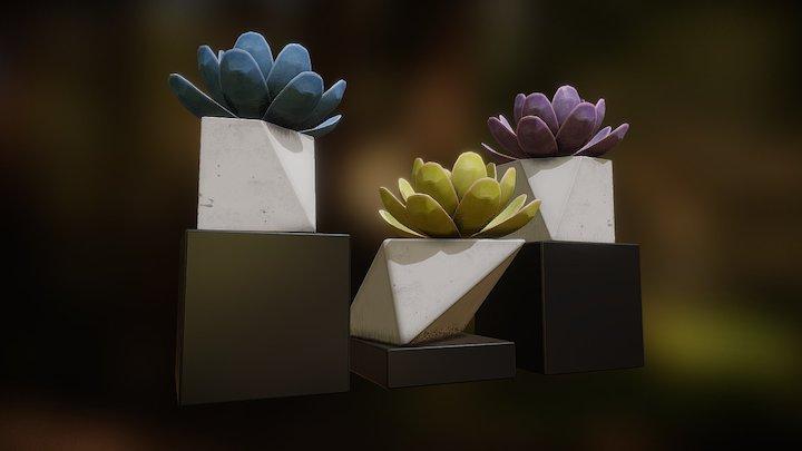 Plant Pot 3 3D Model