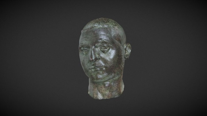 HEAD OF YOUNG MAN 3D Model
