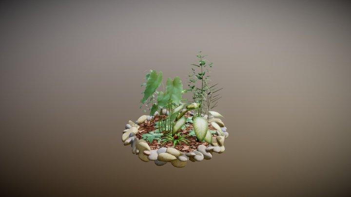 Pflanzen01 3D Model