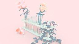 Rose Tinted 3D Model