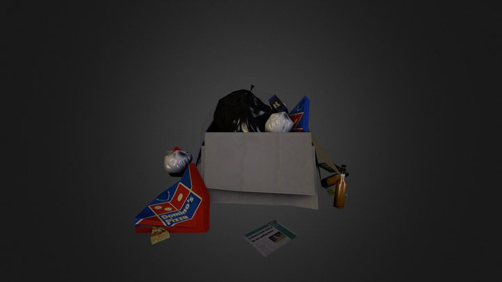 Trash Project 3D Model