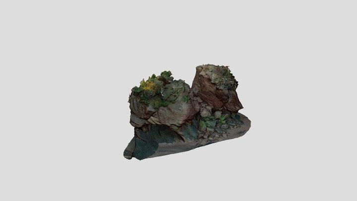 Hopewell Rocks (Elephant) 3D Model