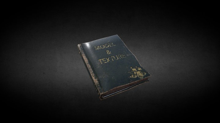 Old book in honor Naughty Dog 3D Model