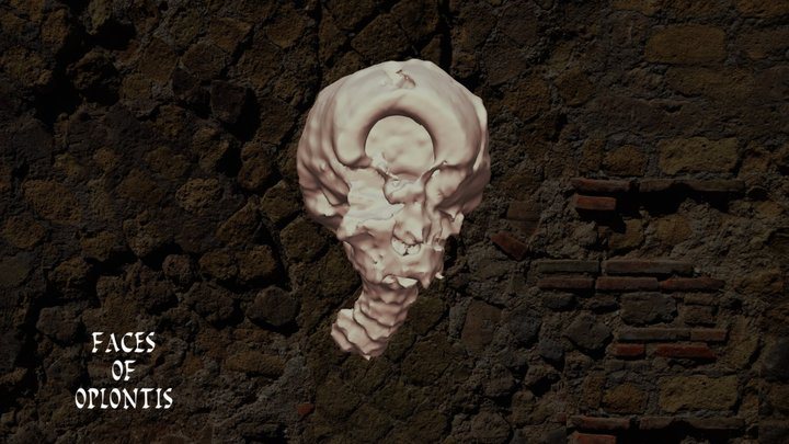 Oplontis B - Skull 4 3D Model