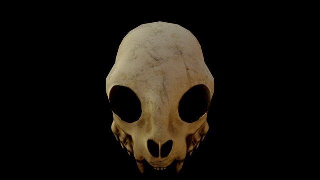 Catskull Mask 3D Model