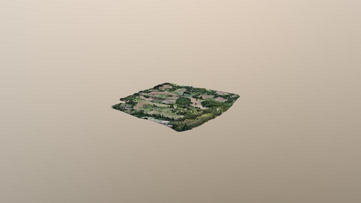 Catandica 3D Model