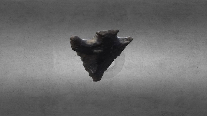 Barbed Projectile Point - Richard Beene Site 3D Model