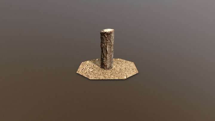 Small Log Photoscan 3D Model