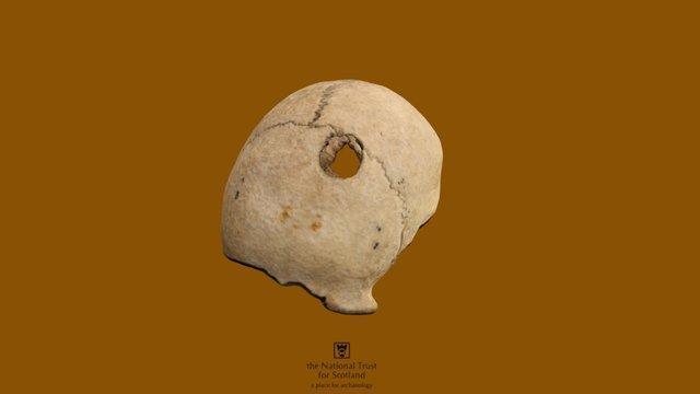 Battle of Culloden Skull 3D Model