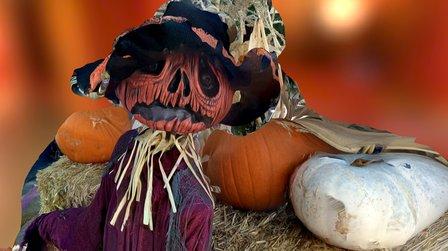 Halloween Scarecrow 2015 3D Model