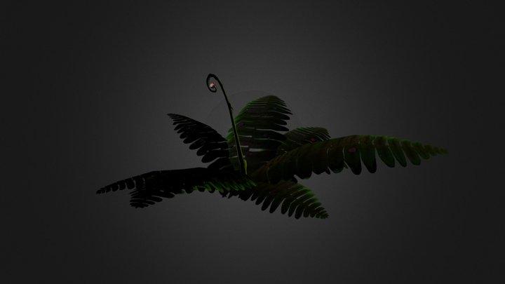 Fern. 3D Model