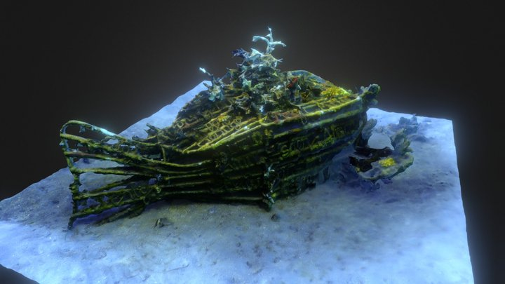 Artificial Reef 3D Model