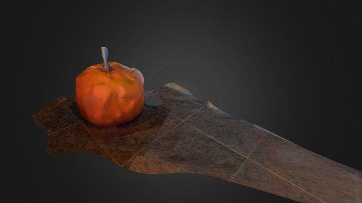 Pumpkin-mesh 3D Model