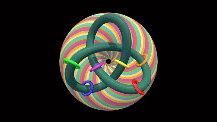 Knot6torbackrodinanimation 3D Model