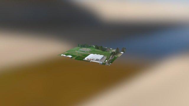 Ortomosaico pista 1 3D Model