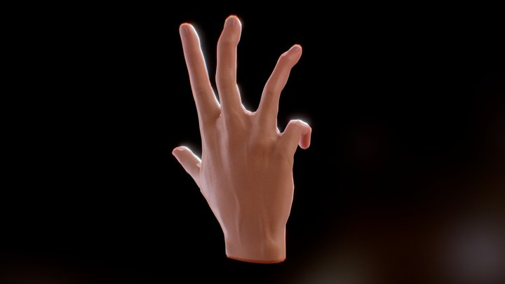 Hand animation test 3D Model