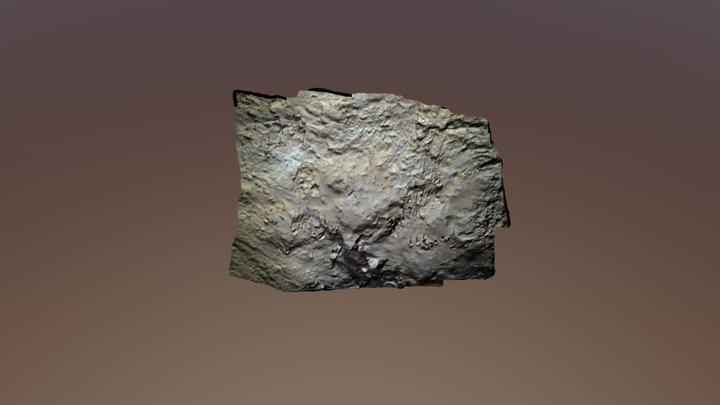 Zarpazos de Oso en una cueva 3D Model