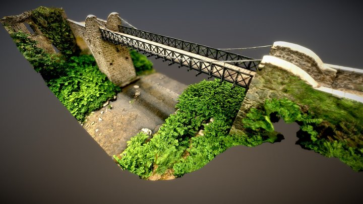 Pont suspendu de Marc Seguin 3D Model