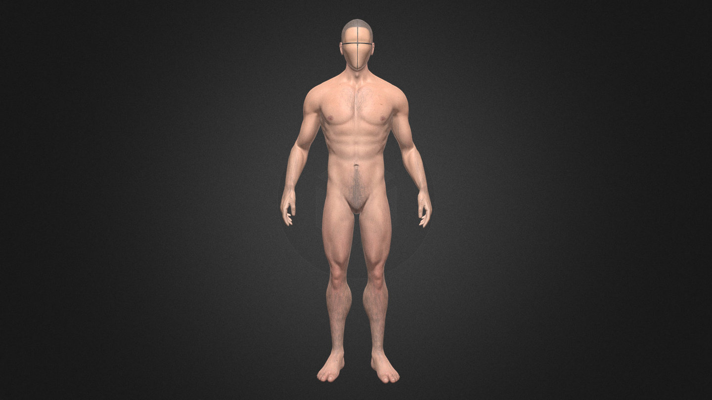 Male Body Reference 3d Model By Yeshua Nel Yeshua Nel B36cc83 Sketchfab