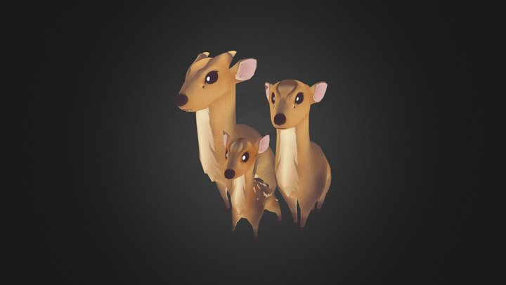 Reeves's muntjac 山羌家族 3D Model