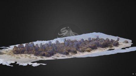 Marseille 2016 - Amphorae field (FRANCE) 3D Model
