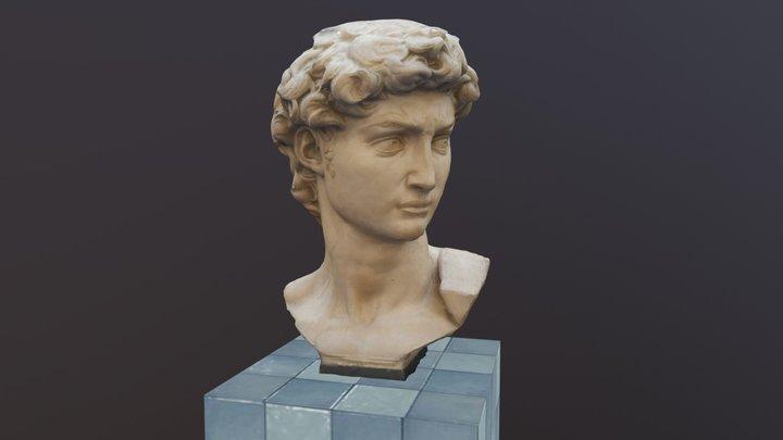 Cabeza de David 3D Model