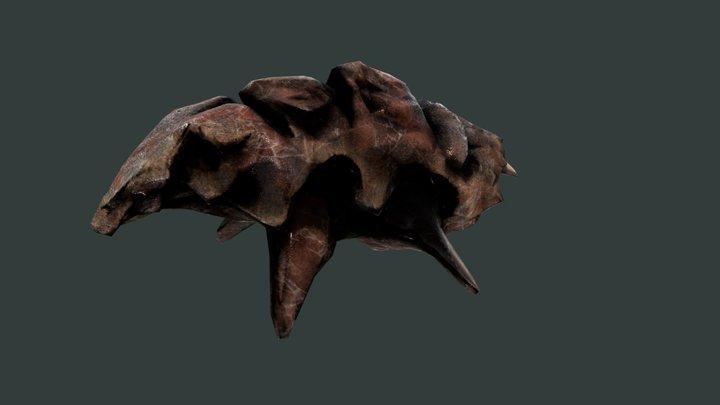 Alien Fauna: Sea-Pig 3D Model