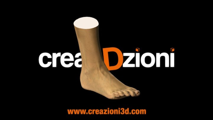 Scansione Piede 3D Model