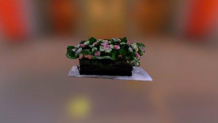 Flower Collada 3D Model