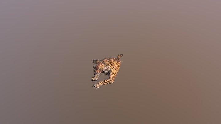 Leopard001-idle02 3D Model
