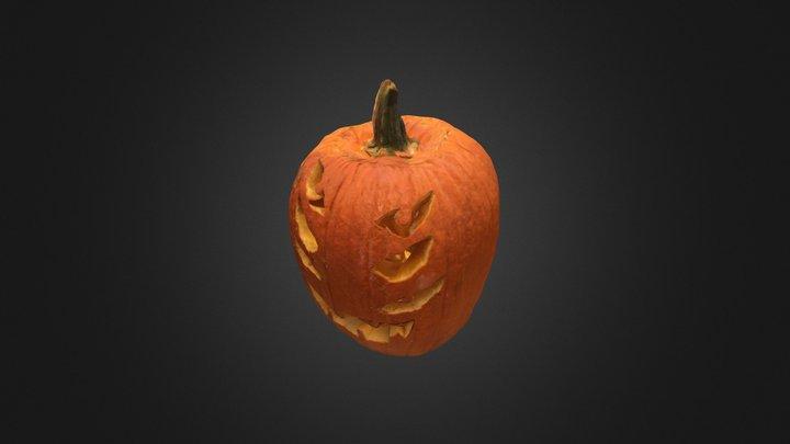 Pumpkin 13 3D Model