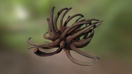 weird exotic fruit 01 3 3D Model