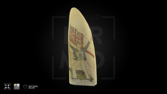 Sperm Whale Tooth - Scrimshaw 3D Model
