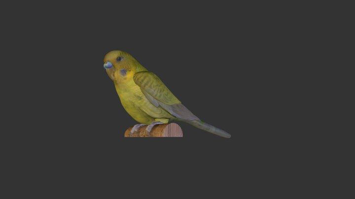 Tweetie 3D Model