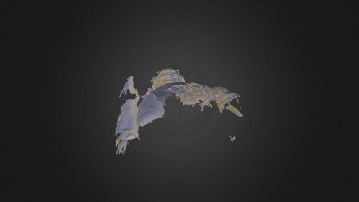 Charles Rich 3D Model