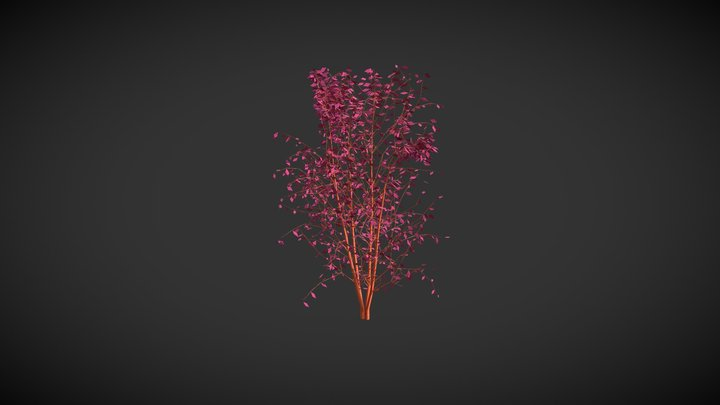 Purple Diamond Shrub 3D Model