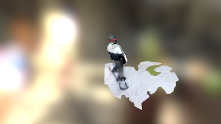 Snowboarding 3D Model