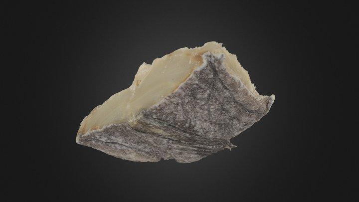 Codfish 3D Model