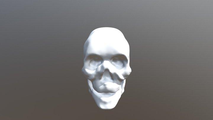 Skull, iteration #3 3D Model